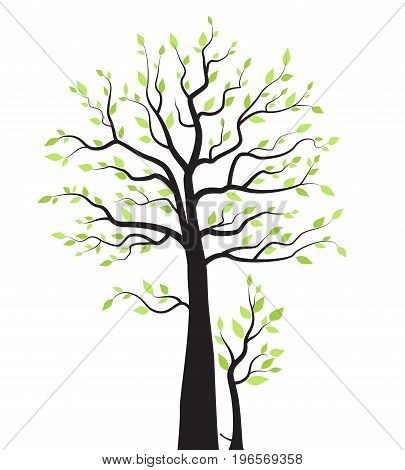 Vector illustration of a tree with leaves on a white background
