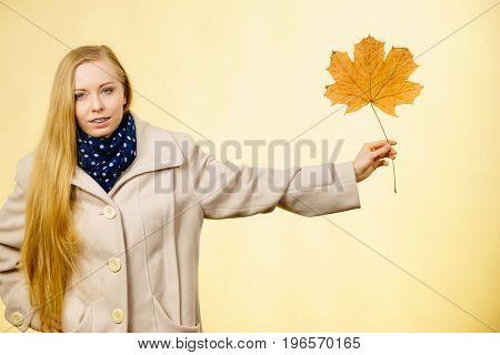 Woman Holding Orange Autumn Leaf