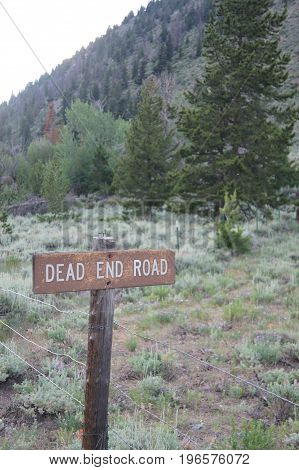 Dead end sign with trees and mountain