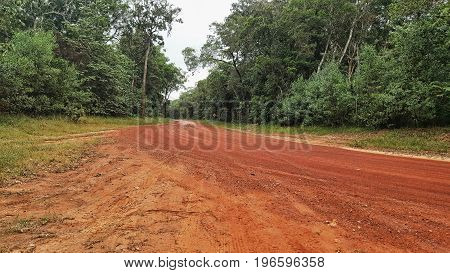 red dirt road into rainforest of Cape York Australia