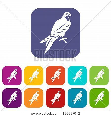 Falcon icons set vector illustration in flat style in colors red, blue, green, and other