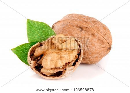 Walnuts with leaf isolated on white background.