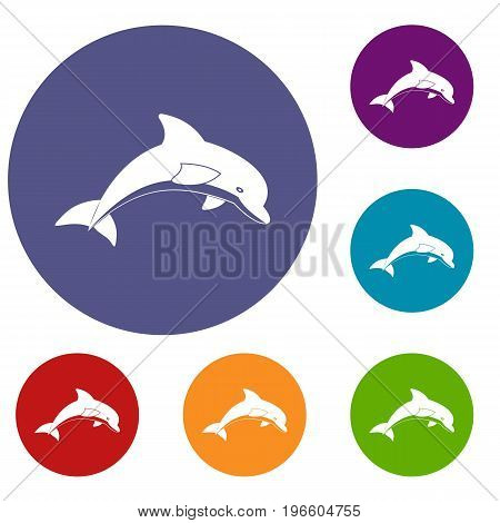 Jumping dolphin icons set in flat circle red, blue and green color for web
