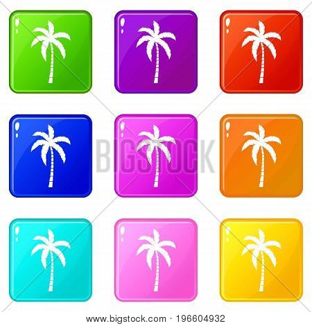 Palm tree icons of 9 color set isolated vector illustration