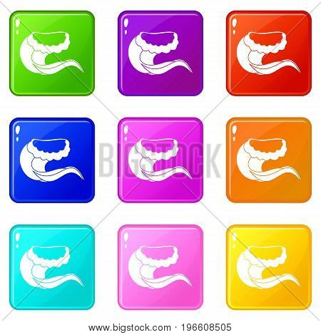 Curling and cracking wave icons of 9 color set isolated vector illustration