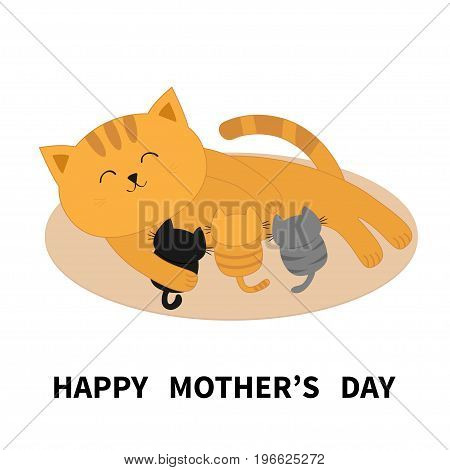Happy Mothers Day. Cat feeding kittens. Mom kitty laying on the floor and nursing little cats. Milk feed. Breastfeeding pet animal. Cute cartoon character Flat design White background Isolated. Vector