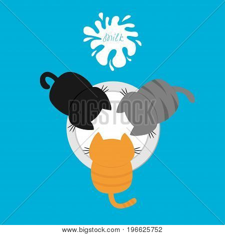 Three kittens eating drinking milk from bowl. Blot with splash. Top air view. Cat feeding. Funny baby kitty animal family. Cute cartoon pet character set. Flat design Blue background Isolated. Vector