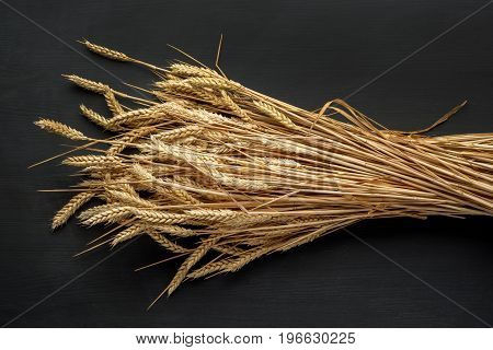 Wheat Ears on the dark Wooden background. Harvest concept .