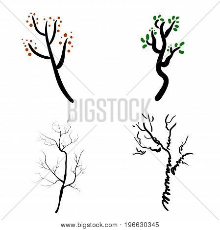 Vector deer antlers isolated on white. Set of different branched.