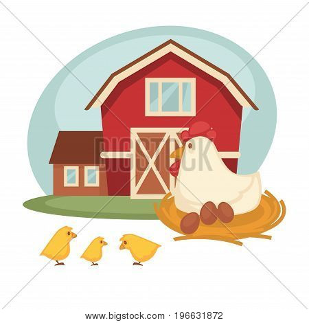 Farm grain barn or house and chicken hen on nest hatching eggs and chicks. Vector cartoon flat design of farmer household and agriculture