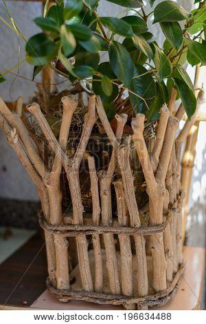 Original and rustic flower pot - close-up