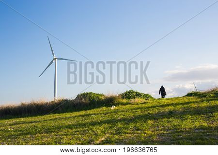 green meadow with Wind turbines generating electricity and man going into the distance.