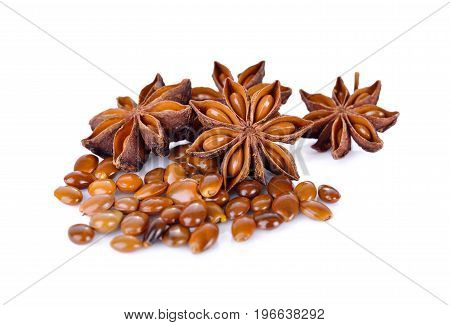 dry Star anise on a white background