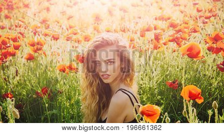 woman or girl with long curly hair hold flower in field of red poppy seed with green stem on natural background summer spring drug and love intoxication opium