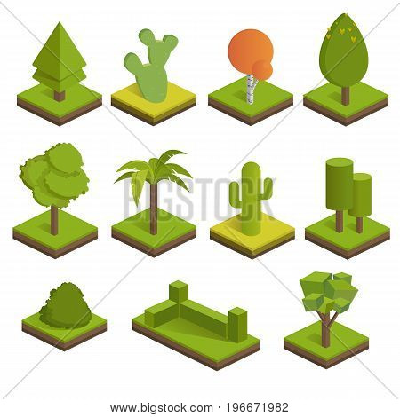 Set isometric 3d trees. Big and small trees,bush,palm tree,cactus,spruce. Vector icons for isometric maps, games and your design.