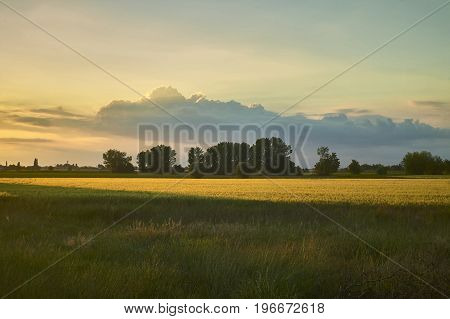 Typical countryside landscape of Venetian territory in Italy resumed at sunset with an approaching storm which creates contrasts between unique warm and cold colors. A wonder of nature.