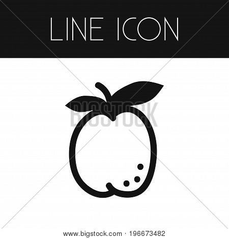 Ripe Vector Element Can Be Used For Juicy, Apricot, Fruit Design Concept.  Isolated Fresh Outline.