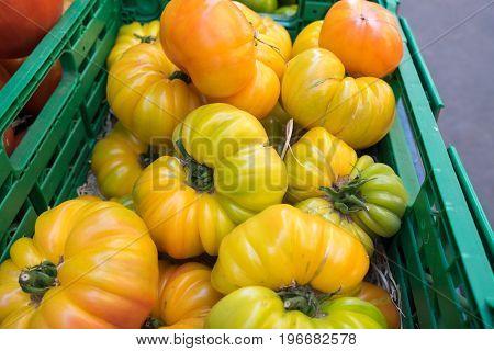 Organic Fresh Yellow Tomatoes