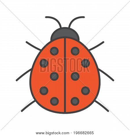 Ladybug color icon. Ladybird. Isolated vector illustration