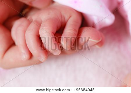 Baby Sleeping In Blanket Holding Mother Hand