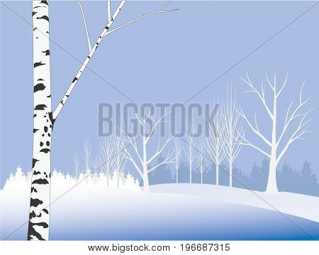 Winter tree on the meadow. Christmas card for your design