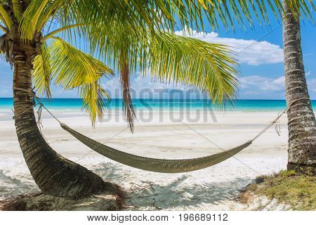 Empty hammock between palm trees on tropical beach in Thailand