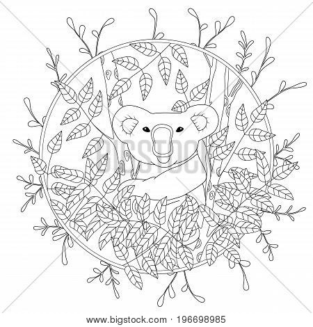 Cute vector coloring page with koala climbing on the eucalyptus tree illustration in color, hand drawn in realistic style.