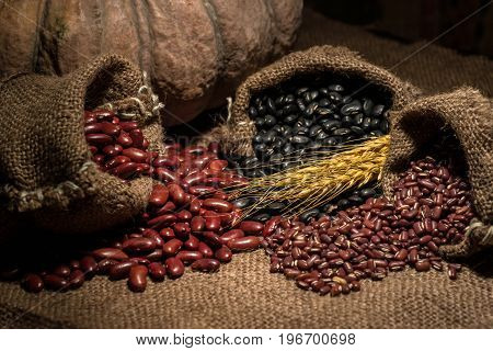 Whole grains of beans on bag sacks and other beans.