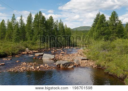 Taiga creek with a rocky bed in South Yakutia Russia