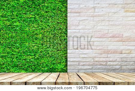 Wooden tabletop with fresh green plant wall background use for products display