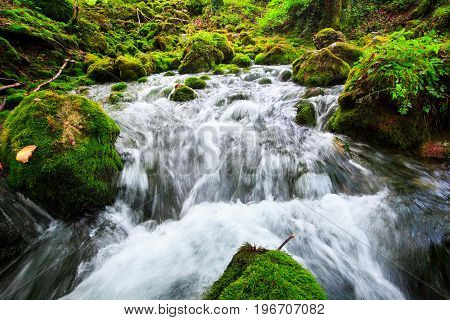 Autumn landscape with mountain river flowing among mossy stones through the colorful forest. Silky smooth stream of clear water. Beautiful cascade small waterfalls. Stream in the wood.