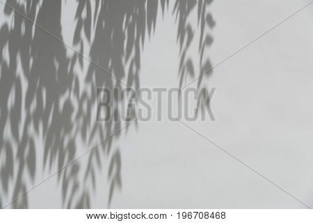 Shadows from the trees falling on the fence nature background