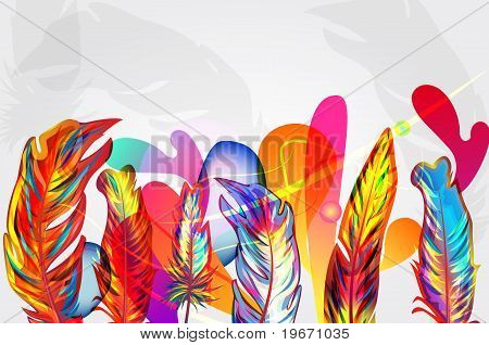 Bright Composition With Feathers