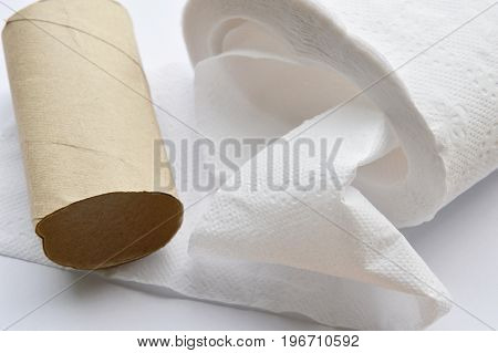 brown hard tissue paper core on white background