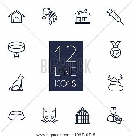 Collection Of Medal, Head, Collar And Other Elements.  Set Of 12 Pets Outline Icons Set.
