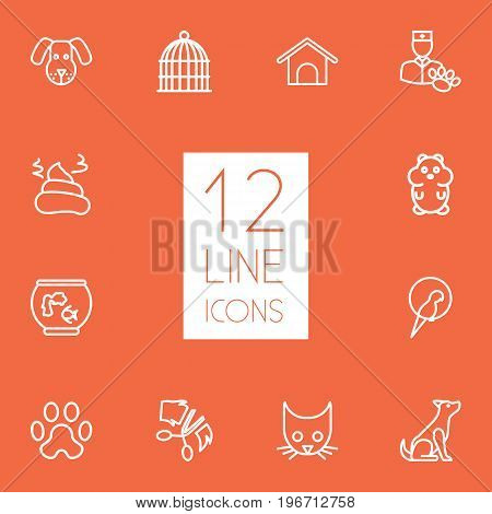 Collection Of Pile Of Poo, Kennel, Parrot And Other Elements.  Set Of 12 Mammal Outline Icons Set.