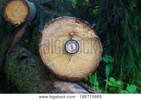 Old compass of a traveler a tourist on cross section of the tree