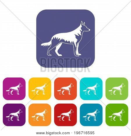 Shepherd dog icons set vector illustration in flat style in colors red, blue, green, and other