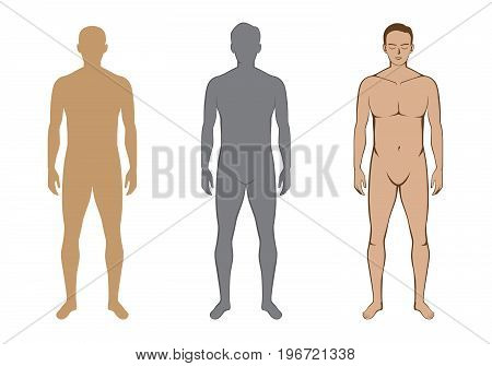 Full body of naked man in front view 3 style in collection. Ideal for Illustration about Anatomy and Health.