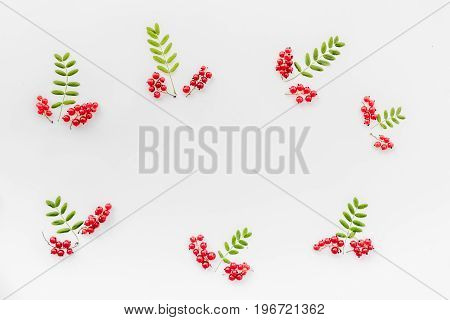 Berry ornament. Red currant and leaves on white background top view.
