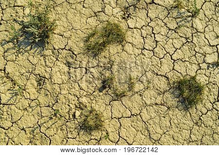 Dry cracked soil with grass texture background. Arid clay desert. Illustration for news about climate changes.
