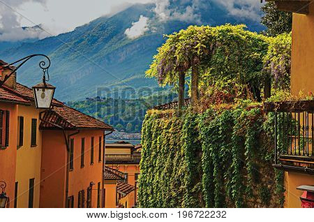 View of Como Lake, balconies with open blinds and bindweed in Bellagio, a charming tourist village between the lake and the mountains of the Alps. Lombardy region, northern Italy. Retouched photo