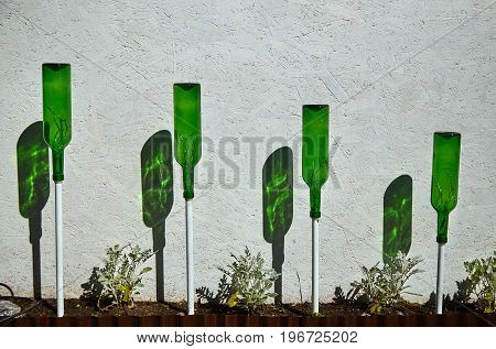An unusual flower bed with inverted green bottles and their shadows in a public park in Tallinn