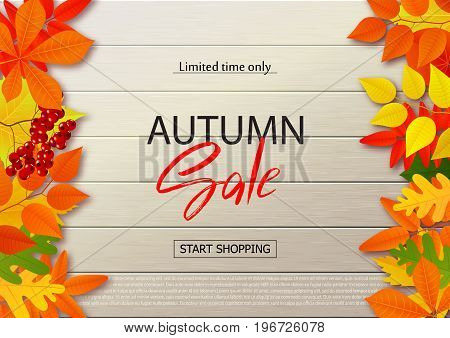 Autumn sale poster with fall leaves on wooden backgrounds. Vector illustration for website and mobile website banners posters email and newsletter designs ads coupons promotional material