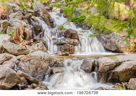 a sparkling jump of a waterfall in the midst of mountain vegetation / a sparkling jump of a waterfall in the midst of mountain vegetation in the national park of Great Paradise in Piedmont, Italy