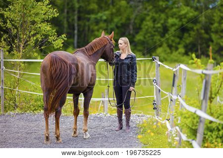 Beautiful young woman with her adult arabian horse standing at a riding course. Relationship between human and animal.