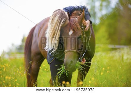 Young woman stands in the in field and hug her large arabian horse. Relationship and connection between human and animal.