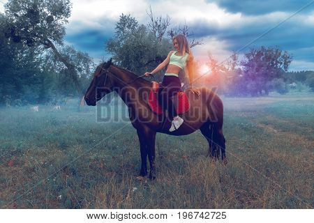 young sexy horsewoman posing on a horse