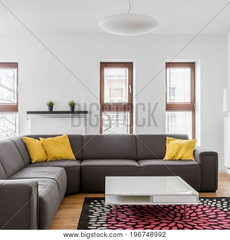 Corner Couch In Modern Apartment