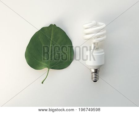 Recycling, Electricity, Environment And Ecology Concept - Energy Saving Lighting Bulb And Green Leaf
